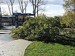 Silný vítr napáchal škody i v Břasích.