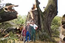 PAMÁTNÁ LÍPA v centru Dobříva vzala za své. Mohutná koruna nevydržela silný nápor větru a rozlámala se na několik kusů. Stáří dřeviny je přitom odhadováno na pět set let a obvod stromu byl sedm a půl metru.