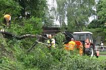 Ze svahu železničního tělesa v Rokycanech mizejí stromy.