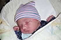 Velkou radost má čtyřletý Dominik ze Strašic, kterému rodiče Renata Halbychová a Patrik Holzápfl pořídili brášku Vojtěcha. Vojtíšek se narodil 19. listopadu 2019 v hořovické porodnici U Sluneční brány, vážil 3 190 gramů a měřil 49 cm.