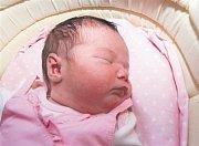 Kateřina NOVÁKOVÁ z Hrádku se narodila 21. června ve FN Lochotín v Plzni. Přišla na svět 2 hodiny a 58 minut po půlnoci. Manželé Slavomíra a Miroslav se nechali pohlavím svého třetího dítěte překvapit až na porodní sál. Doma se na sestřičku těší sourozenc