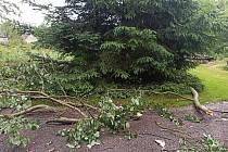 Příjezd do části Veselé zvané Peklo komplikovala ještě ráno špička vzrostlého stromu, která skončila zpřelámaná na zemi. V těchto místech se před několika dny jel závod Rokycanské krpály.