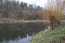 Berounku milují nejen vodáci. Fotky z romantického okolí přívozu v Darové pořídil Jaroslav Kreisinger.