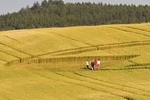 Obrazec mezi obcemi Přívětice a Bezděkov