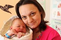 DOMINIK PLESSL z Dobříva si pro svůj příchod na svět vybral datum 28. února. Narodil se deset minut před čtvrtou odpoledne. Maminka Petra a tatínek Zdeněk se nechali pohlavím svého prvního dítěte překvapit. Váha 4360 g, 53 cm.