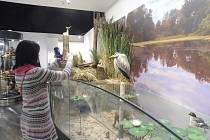 Ve čtvrtek 16. ledna byla zahájena nová stálá expozice v Jihočeském muzeu. Ta vznikla za podpory z IROP a zahrnuje převážně sbírkové předměty muzea.