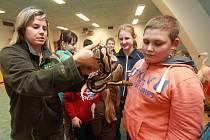 Děti z příměstského tábora DDM v Českých Budějovicích v Zoo Ohrada.