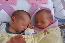 Hned dvojnásobnou radost má rodina Kučerových z  Heřmaně. V pondělí 6.1.2014 přivítala na svět dvojčátka Ladu a Zitu. Lada Kučerová se narodila v 7 hodin 10 minut s porodní váhou 2,76 kg a Zita Kučerová v 7 hodin 11 minut s váhou 2,78 kg. Doma už se na ob