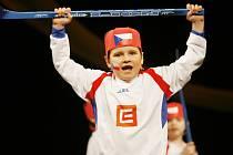 Devátý ročník dětských podiových vystoupení Mateřinka se ve čtvrtek konal v českobudějovickém Metropolu. Zúčastnilo se ho dvanáct mateřských škol z celých Jižních Čech.
