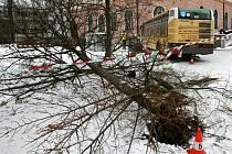 Autobus městské hromadné dopravy narazil 28. března ráno v centru Českých Budějovic do budovy pošty. Nehoda se stala na Senovážném náměstí, vůz porazil semafor, projel parkem a následně narazil do budovy. Řidič autobusu utrpěl nespecifikované zranění.