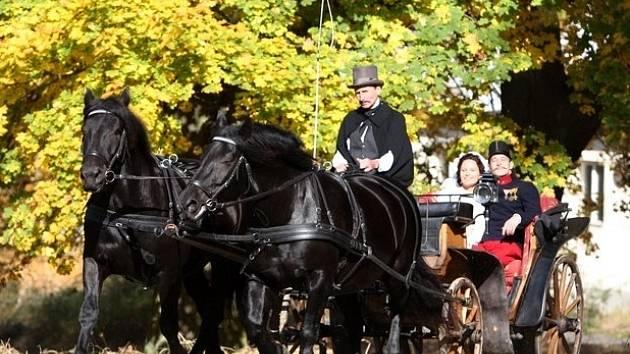 Snímek z natáčení televizního filmu Sněžná noc. Kočár s Jitkou Čvančarovou, Janem Zadražilem a kočím Vladimírem Vopravilem vezou norické klisny Háta a Hany.