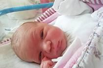 Jan Rygel se narodil 14. srpna a jeho rodiči jsou Vendula a Jan Rygelovi z Nové Včelnice. Chlapec vážil 3910 gramů. Doma na něj čekal bráška Hyneček.