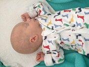 Sedmiletá Emmička se těší ze svého bratříčka Maxe Šídla. Rodičům Lily Černíkové a Tomáši Šídlovi se narodil dne 11. 10. 2017 ve 20.47 h,vážil 1,55 kg. Vyroste v Českých Budějovicích.