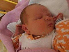 4,49 kg – touto úctyhodnou porodní váhou se pyšní malá slečna jménem Simona Opolcerová. Narodila se v pondělí 28.10.2013 v 5 hodin a 35 minut. Bydlet bude spolu s rodinou ve Veselí nad Lužnicí.