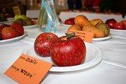 Výstava ovoce a zeleniny se koná do neděle v sále Hospody U Kostela ve Svatém Janu nad Malší.