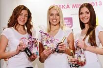 Casting na Českou Miss 2013 v Českých Budějovicích.