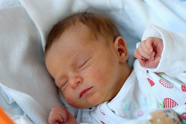 Laura Pexová se v budějovické nemocnici narodila 29. 10. 2018. Maminka Kristýna Bernardová ji porodila ve 13.58 h., vážila 2,83 kg. Vyrůstat bude v krajském městě.