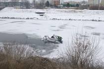 Zamrzlou uhynulou labuť na Vltavě v Českých Budějovicích  včera dopoledne nahlásil občan městské policii. Strážníci ji objevili zachycenou na okraji ledu a proudící vody.