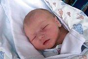 Viktorie Molnárová se narodila 8. 1. 2019. Maminka Petra Molnárová ji přivedla na svět ve 20.40 h. Váha ukazovala 3,24 kg. Poznávat svět bude v Dolním Bukovsku.