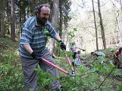 Při brigádě v Terčině údolí odstraňovali dobrovolníci náletové dřeviny a čistili koryta potoků.