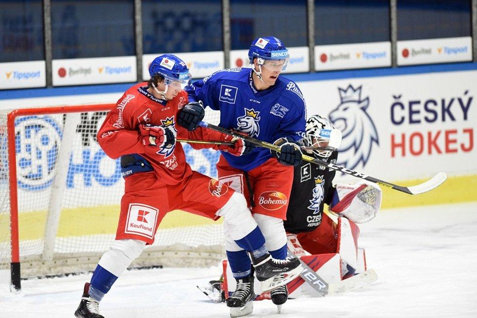 Hokejový národní tým se připravuje v Jindřichově Hradci