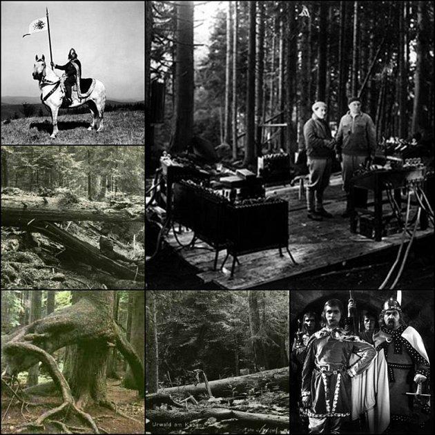 Filmaři použili ve filmu přírodu vboubínském pralese knížete Schwarzenberga.