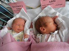 Hned dvojnásobnou radost mají v Borovanech, a to z holčiček Katky a Adélky Bauerových, jež se narodily v pondělí 17.9.2012. Katka s porodní váhou 2,53 kg v 8 hodin a 16 minut a Adéla s porodní váhou 2,74 kg v 8 hodin a 15 minut.