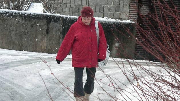 O tom, že to na zasněžených chodnících klouže, se včera přesvědčili například obyvatelé Prachatic. Sníh v noci na dnešek připadl zejména v šumavských oblastech regionu.