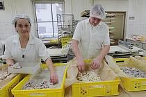 Vánoční cukroví se v pekařství a cukrářství U Kláštera v Českých Budějovicích vyrábí stejně jako doma. Nezapomíná se ani na kvalitní suroviny.