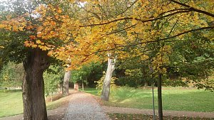 Podzimní počasí dokáže být i příjemné.