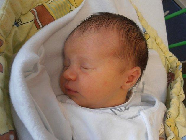Pavla a Miroslav Votrubovi přivítali na svět druhorozenou Ellu Votrubovou. 2,92 kg vážící Ella se narodila v pondělí 19.1.2015 v 15 hodin a 22 minut. Doma na Borku na ni čeká ještě dvouletý bratříček Šimon.