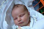 Bella Ciglbauerová se rodičům Janě a Davidovi Ciglbauerovým narodila 30. 10. 2017  v 10.18 h s váhou 4,11 kg. Bella vyroste v Českých Budějovicích po boku brášky Aleše (7).