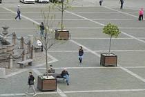 Na zkoušku jsou nyní kolem budějovické Samsonovy kašny rozestavěny velké květníky se stromy. Uvažuje se ale o tom, že stromy budou na náměstí Přemysla Otakara II. vysazeny trvale.