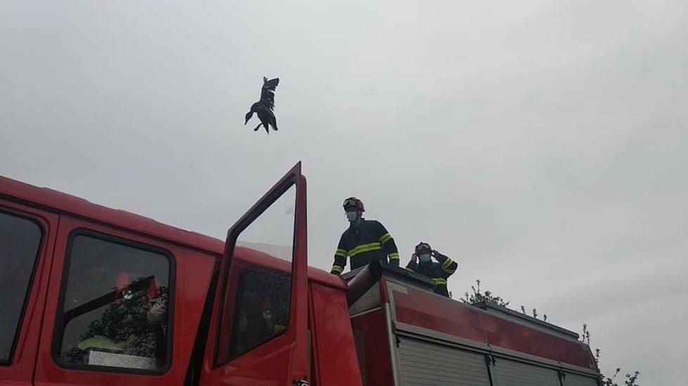 Jindřichohradečtí profesionální hasiči 14. května v Malíkově nad Nežárkou vysvobodili kachnu z drátů.