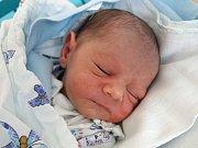 Tříletý Eugen a dvouletá Petra se těší z mladšího bráchy Davida Tokára. Maminka Petra Janovová jej porodila 17. 4. 2018 v 0.59 h. Vážil 3,00 kg. Žít bude v krajském městě.