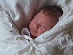 Prvorozená Eliška Wolkerová přišla na svět 5.2.2015 v 10.27  hodin v Českých Budějovicích. Vážila 3,63 kg. Rodiče děkují lékařům a sestřičkám ze všech oddělení, která o Elišku pečovala.