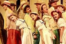 V premiéře muzikálu, který uvedla opera Jihočeského divadla, si zpěváci v čele s Miroslavou Veselou vedli dobře.