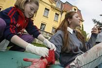 V areálu DDM se v úterý konalo každoroční oblastní kolo soutěže Hlídek mladých zdravotníků Českého červeného kříže.