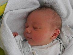 S Třeboní bude navždy spojeno dětství Elišky Lebedové. Ta na svět vykoukla v českobudějovické porodnici v úterý 1. 12. 2015 ve 4 hodiny a 13 minut. Po narození vážila 3,20 kg.