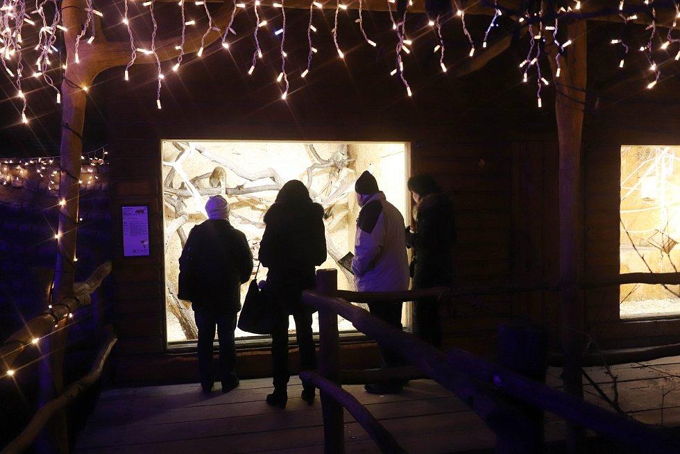 Vánoční zoo Ohrada v Hluboké nad Vltavou