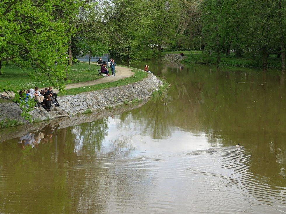 Řeky Vltava a Malše v Českých Budějovicích.