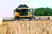 ZAČALY ŽNĚ. Úrodu z polí již  začali sklízet také zemědělci na Českobudějovicku. Sklizeň  ale ohrožuje déšť.