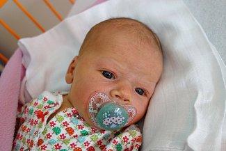 Velikou radostí je pro maminku Michaelu Merunkovou novorozená Justýna Vlková. Na svět přišla 25. 9. 2017 ve 14.18 h. Její porodní váha byla 3,53 kilogramu. Žít bude v Českých Budějovicích. Foto: Ilona Lonsmínová