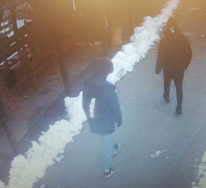 Dva zloděje, kteří bez vstupenky zamířili do zoo v Hluboké, zachytila kamera.
