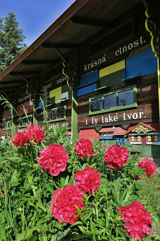 Na Strakonicku v Machově včelíně Krušlov udržují odkaz včelaře a řezbáře Josefa Macha, vzniklo zde pohádkové včelí muzeum.