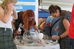 Českobudějovické IGY Centrum se již posedmé proměnilo v obrovské tržiště, oblíbený projekt Deníku opět pomůže prostřednictvím nadace Jihočeské naděje talentovaným dětem.