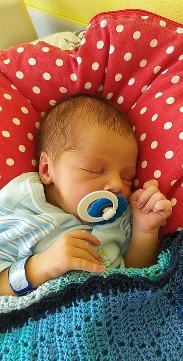 William Ščepka z Písku. Prvorozený syn Terezy Vláškové a Jiřího Ščepky se narodil 16. 6. 2021 ve 12.43 hodin. Při narození vážil 3250 g a měřil 53 cm.