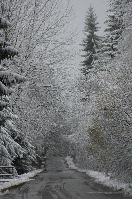 Sníh na Prachaticku v pondělí 11. listopadu.