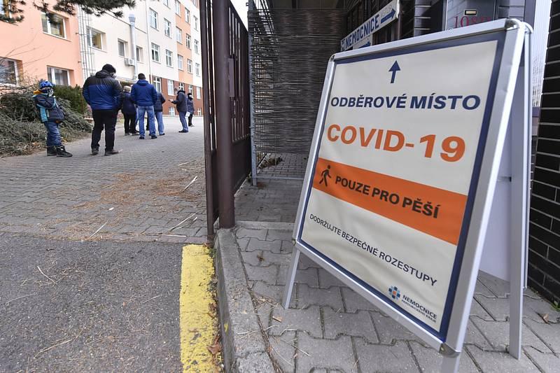 Testování na covid-19, ilustrační foto.