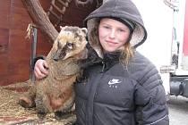 Mezi zvířata, o která se v cirkuse stará Karolína Berousková, patří i nosál Matýsek.